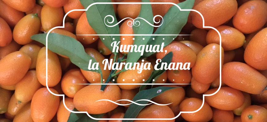 comprar_kumquat